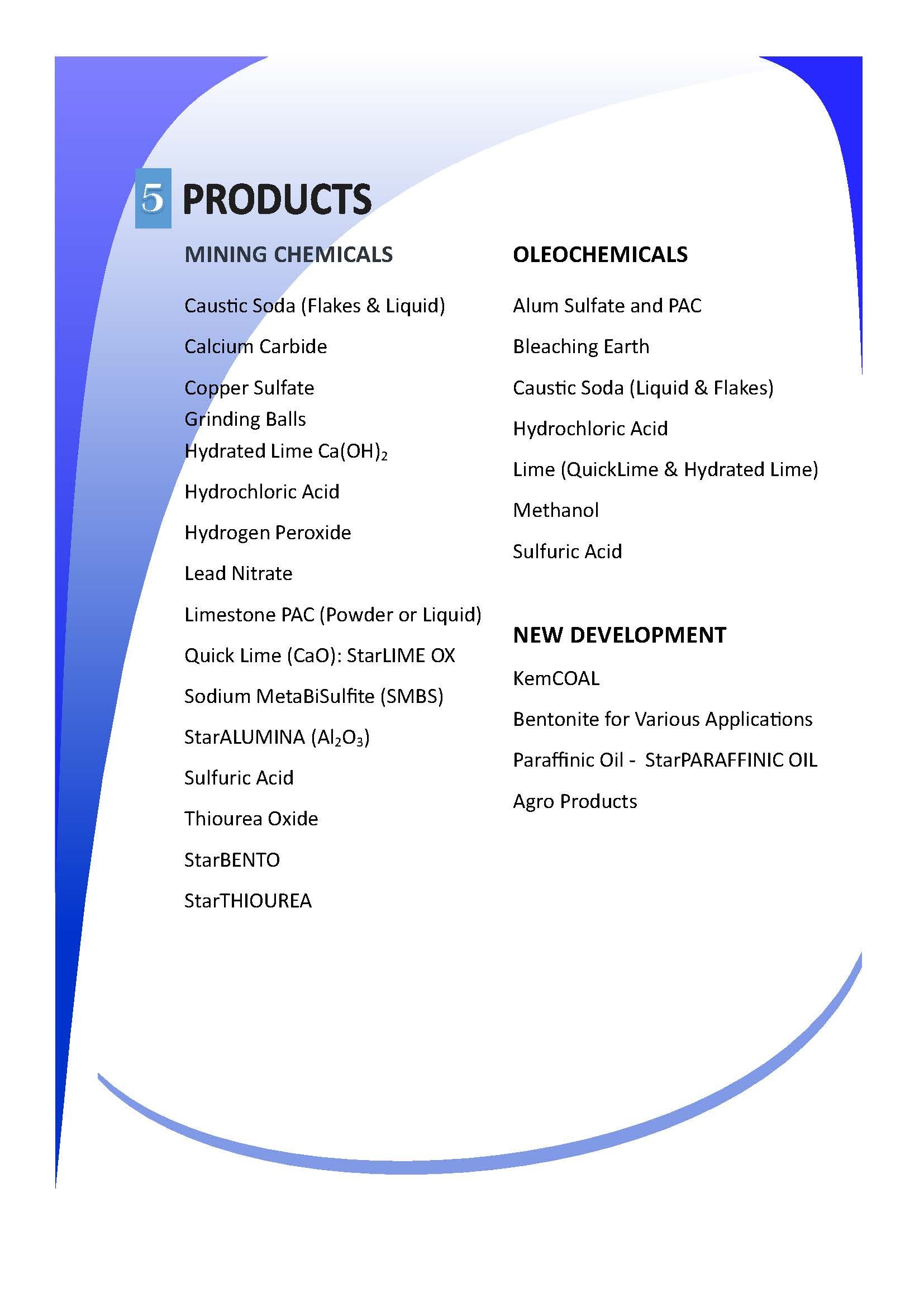 Marvelous Company Profile Format Word Document Within Company Profile Format Word Document